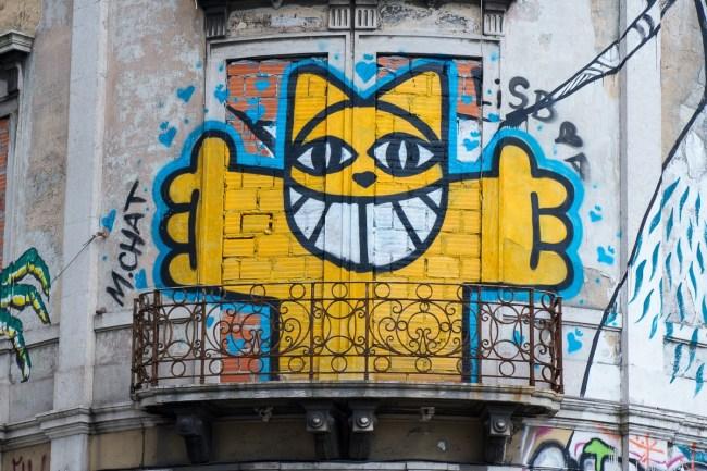 Gatiños (1)
