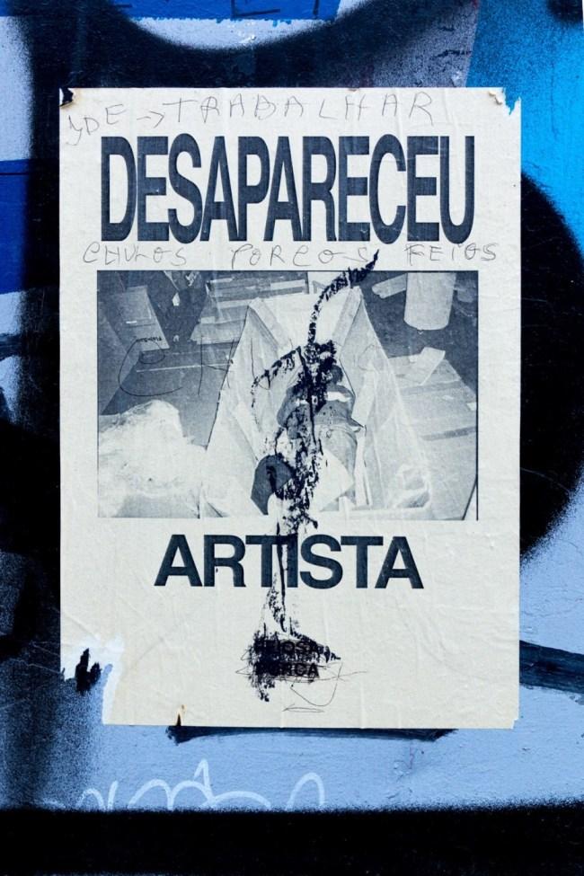 Desapareceu artista (19)