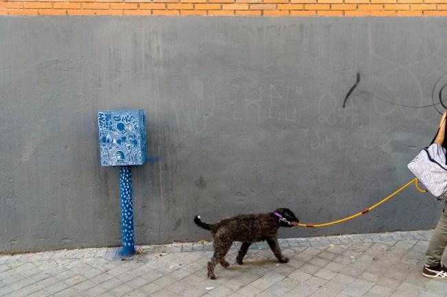 Blue box (12)