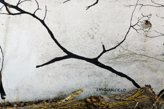 Bosques (14)
