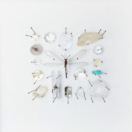 Collezione di una gazza ladra - Nido trasparente, 2017, cm18x18x6,mixed media