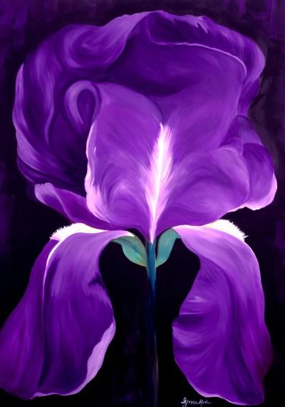 "Absi Grace, ""Iris"""