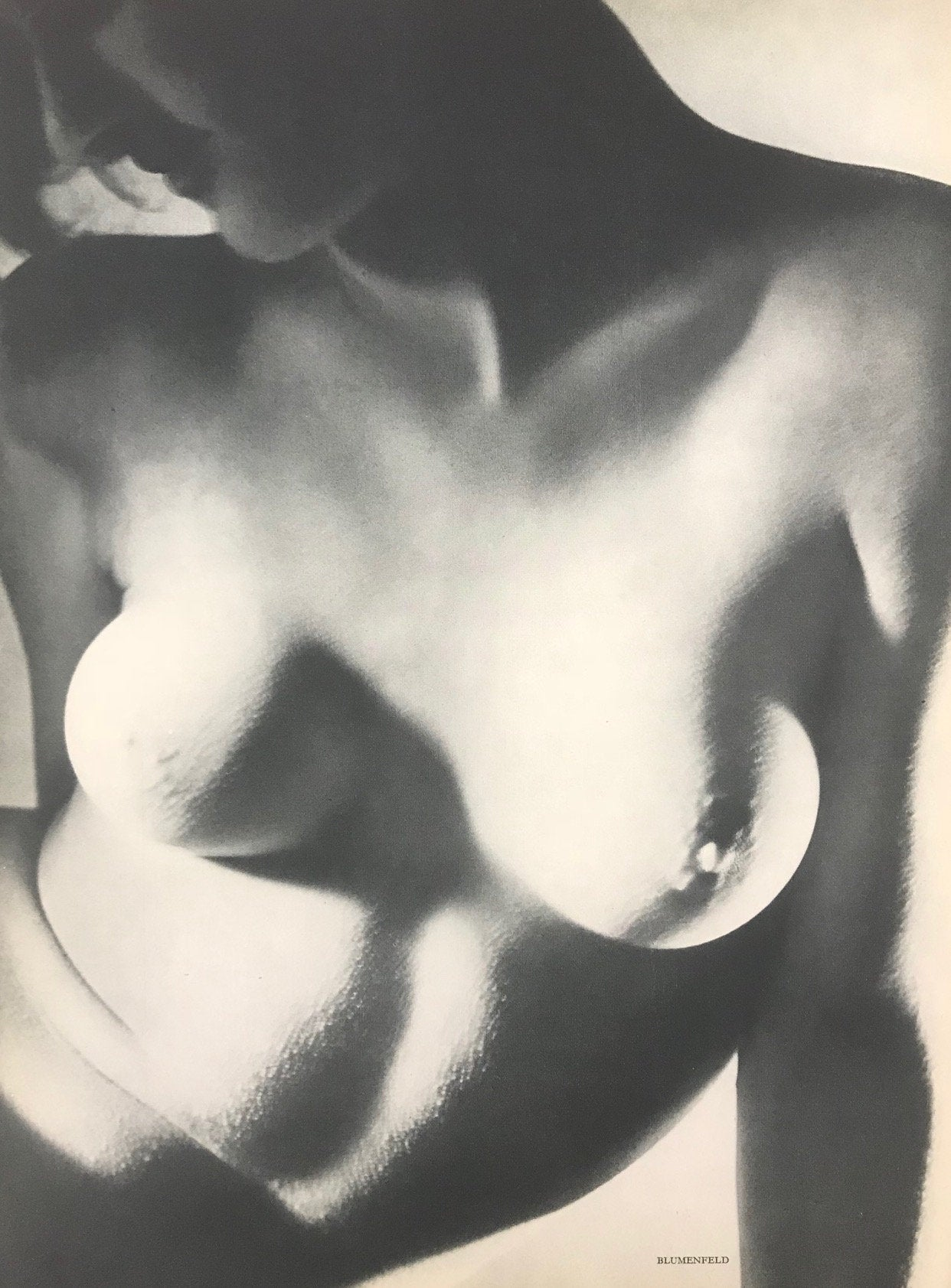 Erwin Blumenfeld 2, Nude photograph printed 1938 for Verve