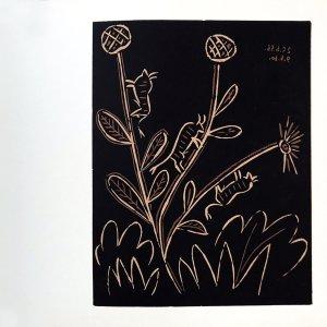 Pablo Picasso 45, Linogravures Plante aux toritos 1962