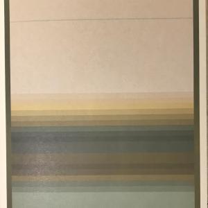 Jim Bird, Original Lithograph, Ediciones Poligrafa 1979