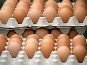 Cómo conservar los huevos