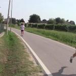 Schive...Run-011 (Copia)
