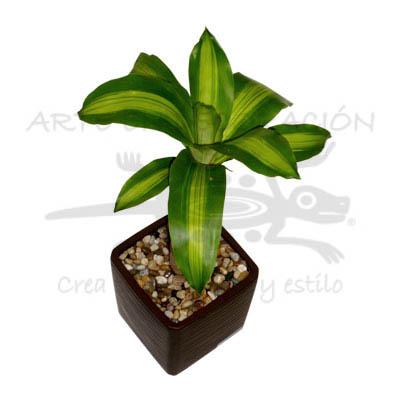Jardinera Venta diseo y personalizacin de accesorios