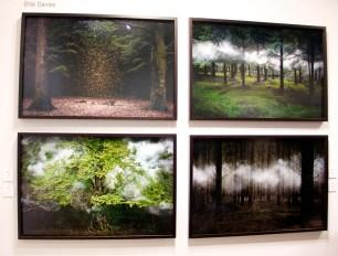 Elie Davies A Galerie