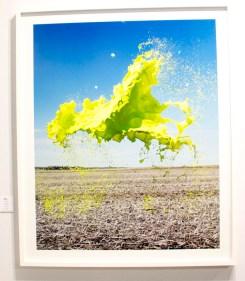 Green Floto et Warnes A Galerie Paris