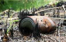 Wildfire industry losses