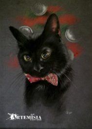 Kal El - Pet Portrait - Soft pastel on paper 30x40