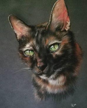 Luna - Pet portrait - Soft pastel on paper 30x40