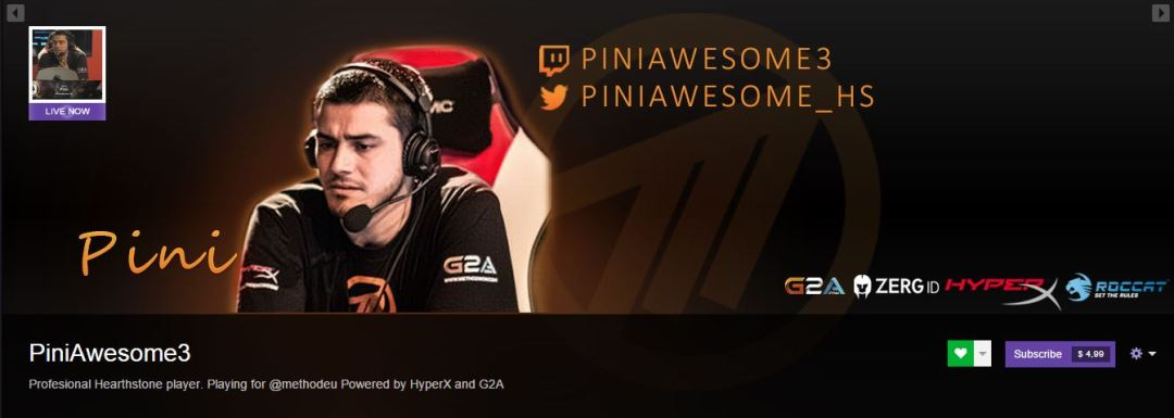 Pini Twitch Banner