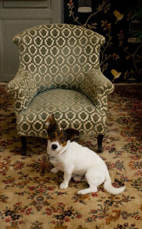fauteuil fauteuil anglais ancien chauffeuse napolon III velours damass ancien dpoque