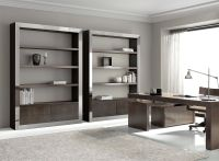 Office Bookcase with stainless steel