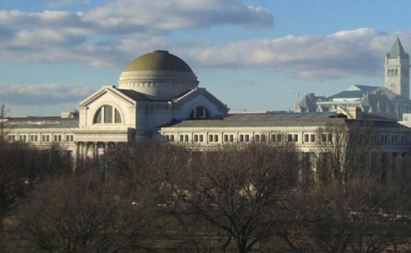 National Natural History Museum Washington DC