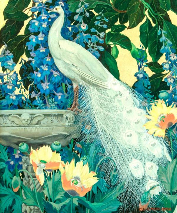Peacock Fine Art Paintings