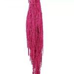 Amaranthus conservat Fucsia