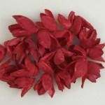 Bakuli red