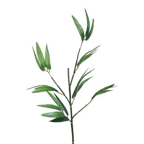 Bambus crenguta 100cm detaliu