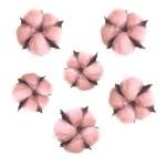 Bumbac capete roz pastel