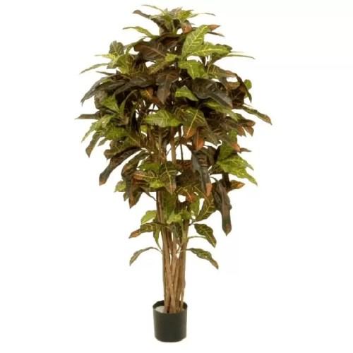 Croton copac premium artificial H130cm