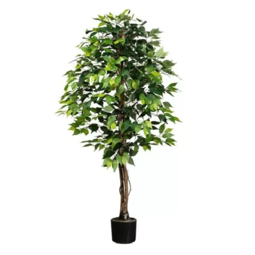 Ficus artificial basic verde 150cm