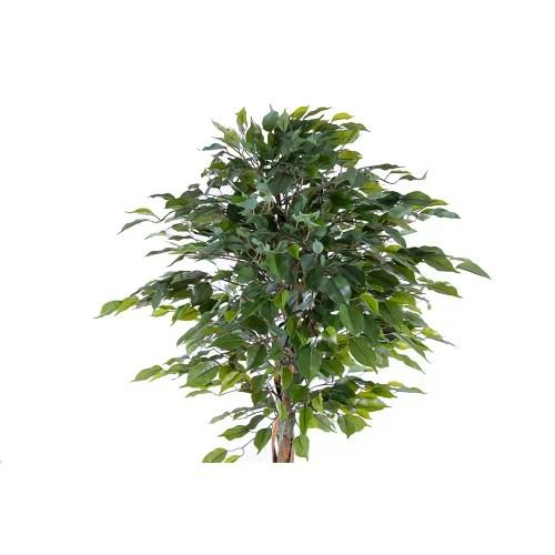 Ficus artificial c165 cm 2