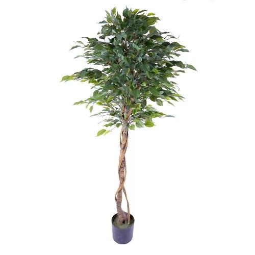 Ficus artificial c165 cm 3