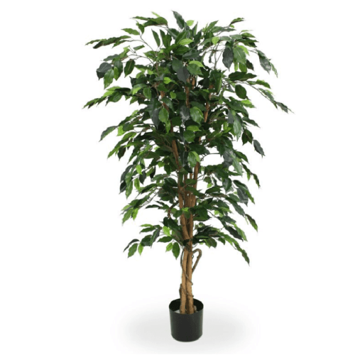 Ficus artificial premium trunchi natural 150cm
