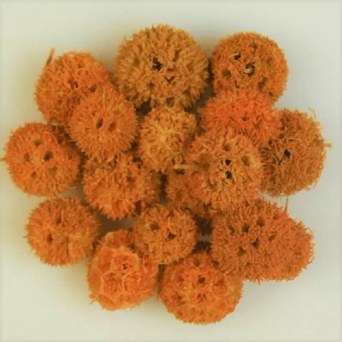 Fructe deco Orange 1