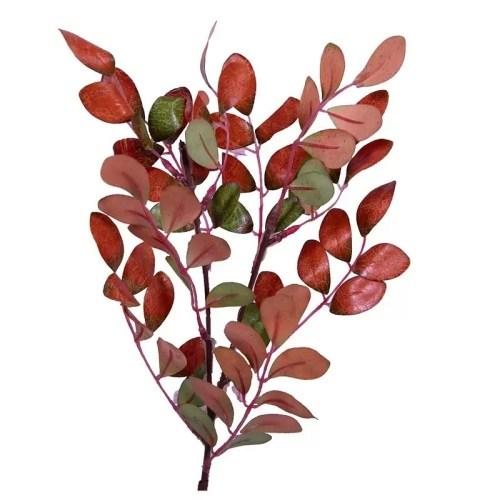 Frunza Aronia color 2