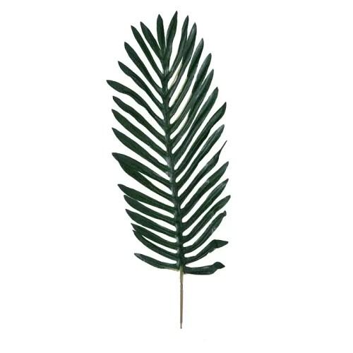 Frunza palmier