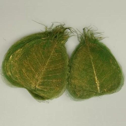 Frunze Verde Iarba Aurii