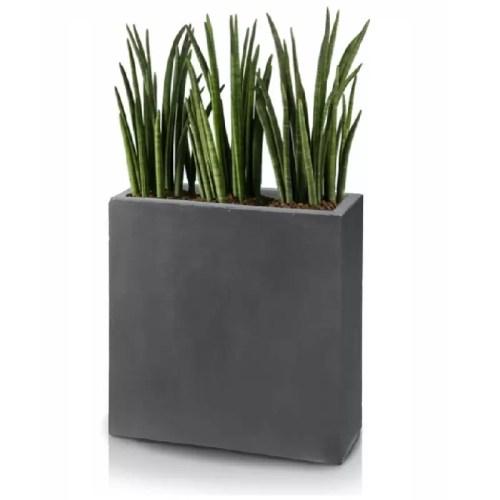 Ghiveci plante dreptunghi compozit fibra beton usor gri antracit sansevieria