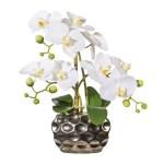 Orhidee alba in ghiveci argintiu