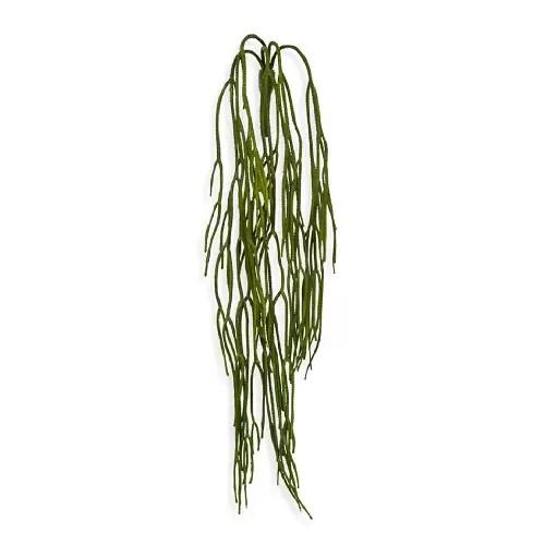 Rhipsalis 65cm Artflora