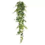 Scindapsus pictus 140cm