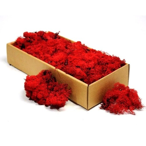 licheni decorativi red artflora 500g 1
