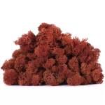 licheni vrac artflora brick