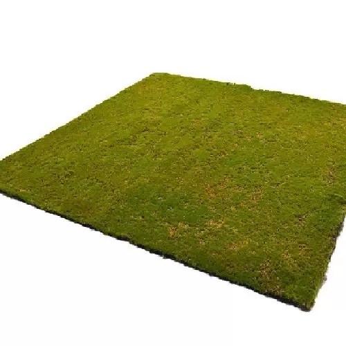 muschi artificial tip carpeta