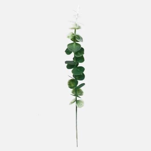 Eucalipt pick 40cm