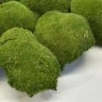 artflora ball moss green grass