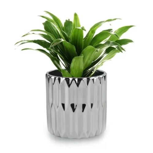Ghiveci Moon rotund Silver 118 planta