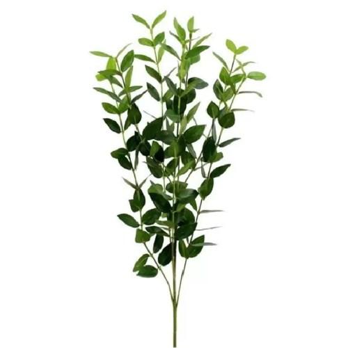 Crenguta Eucalipt verde 60cm
