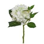 Hortensie fir alb 46 cm