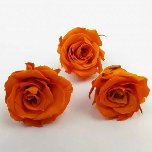 Trandafir mini stabilizat x12 oranj