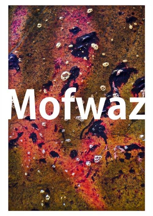 """MOFWAZ = TRANSFORMATION (À l'origine les restes de chairs d'un poisson fraichement pêché). © 2016. Mehdi Basses. """"CAZPI"""" - Martinique"""