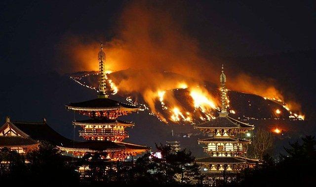 Wakakusa Yamayaki Festival Membakar Gunung Di Jepang 3
